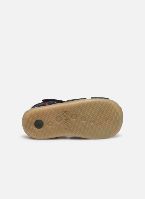 Sandali e scarpe aperte Kickers Bigbazar-2 Azzurro immagine dall'alto