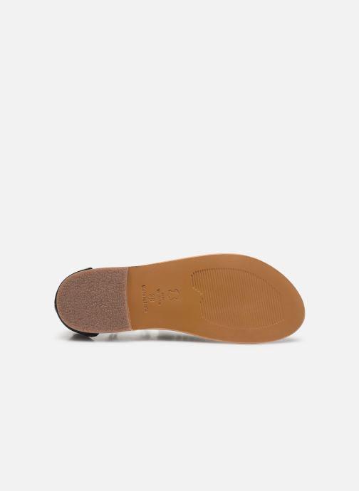 Sandali e scarpe aperte White Sun Paraiba Nero immagine dall'alto