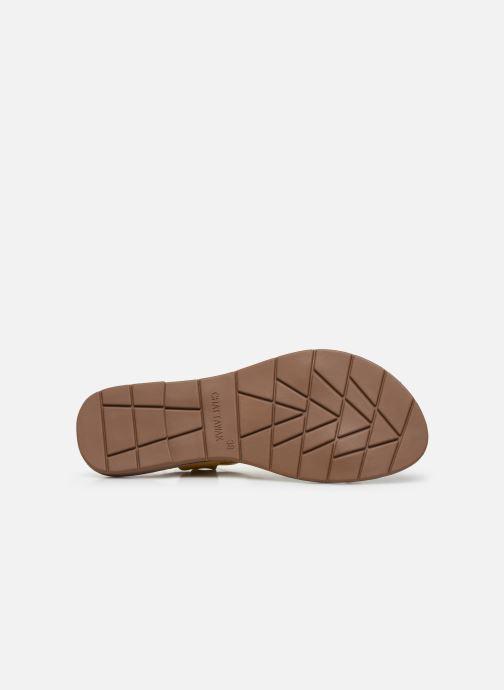 Sandales et nu-pieds Chattawak PETUNIA Jaune vue haut