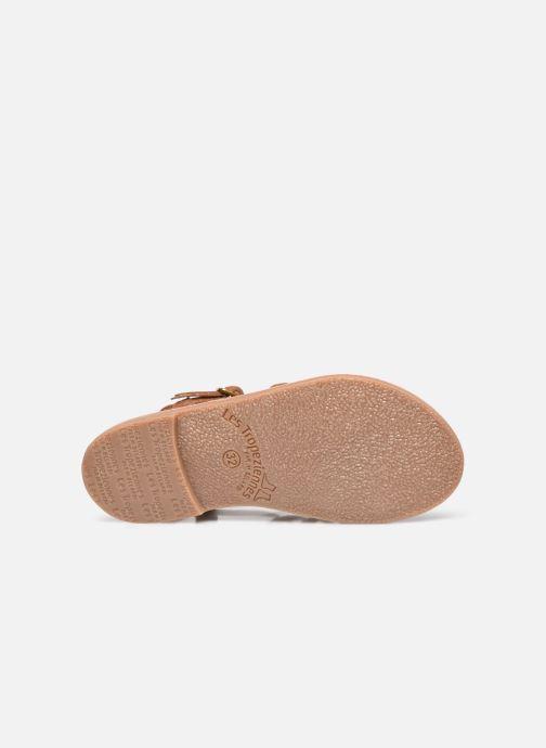 Sandales et nu-pieds Les Tropéziennes par M Belarbi Monbuck Marron vue haut