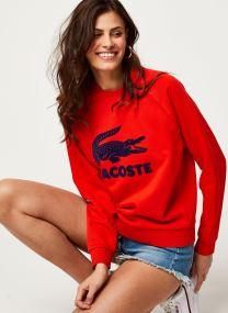 Kleding Accessoires Sweatshirt SF5640-00