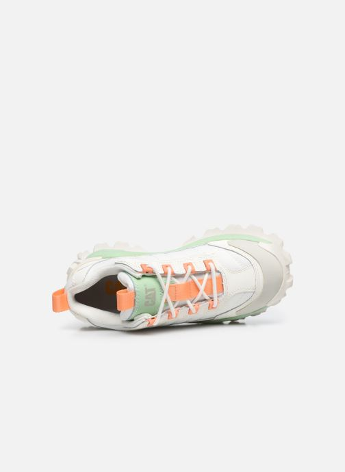 Sneakers Caterpillar Intruder W Wit links
