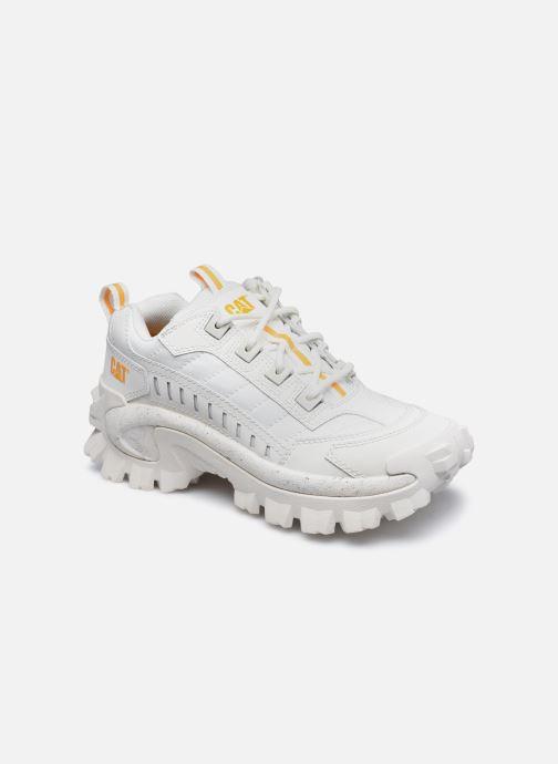 Sneakers Dames Intruder W