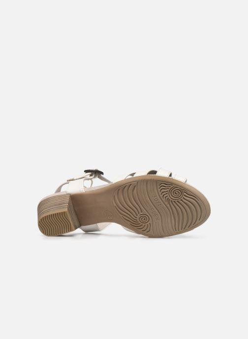 Sandali e scarpe aperte Jana shoes JYST Bianco immagine dall'alto