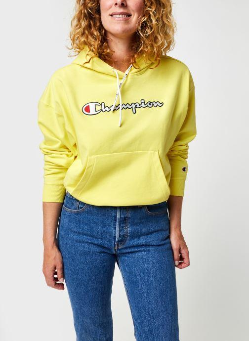 Vêtements Accessoires Champion Large Script Logo Hooded Sweatshirt W