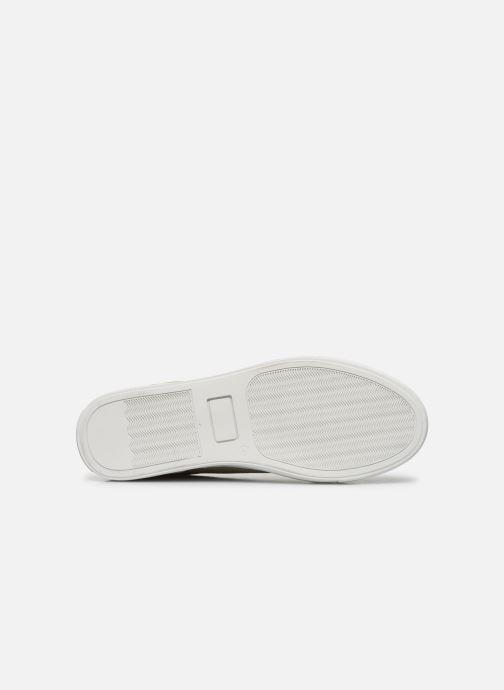 Sneakers Mr SARENZA Notini Beige immagine dall'alto