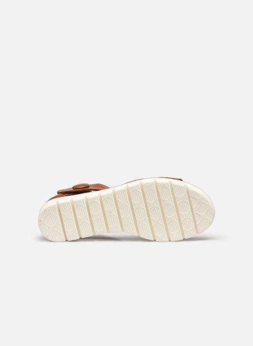 Sandali e scarpe aperte Marco Tozzi MUJDA Marrone immagine dall'alto