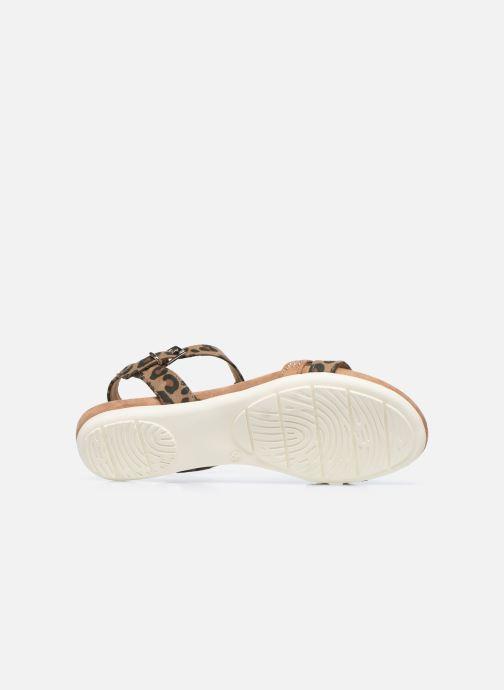 Sandali e scarpe aperte Marco Tozzi MUTLU Marrone immagine dall'alto
