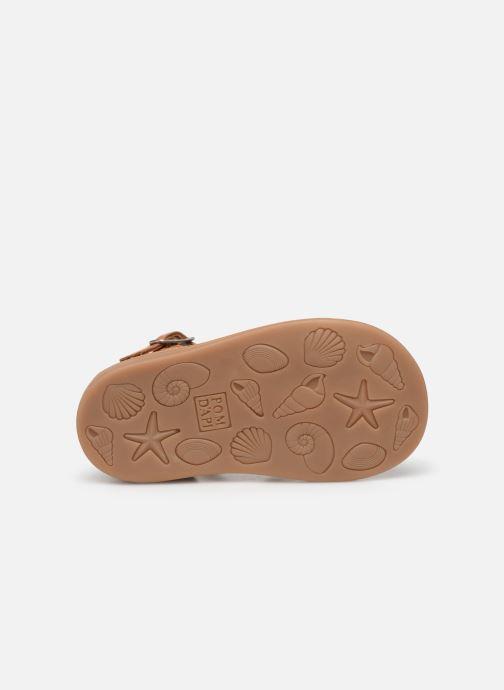 Sandales et nu-pieds Pom d Api Poppy Pitti Marron vue haut