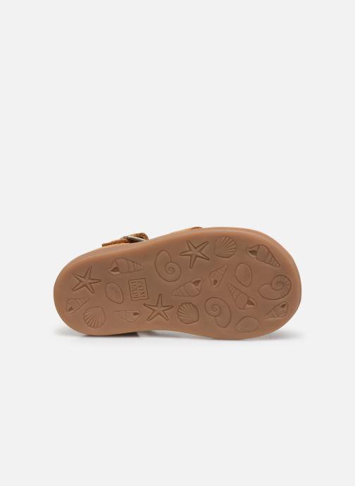Sandales et nu-pieds Pom d Api Poppy Daddy Marron vue haut