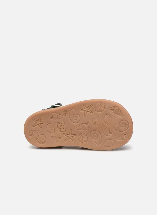 Sandales et nu-pieds Pom d Api Poppy Daddy Vert vue haut