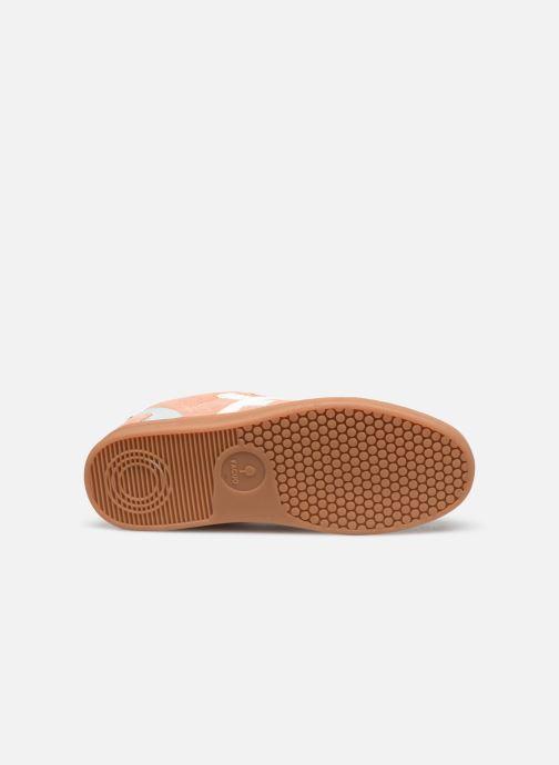 Sneakers Faguo BASKETS HAZEL SUEDE VP Rosa immagine dall'alto