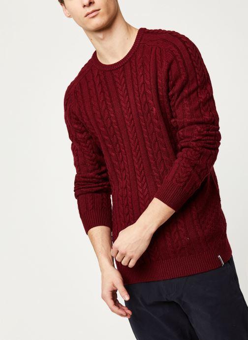 Vêtements Faguo MARIGNY SWEATER WOOL VP Bordeaux vue détail/paire
