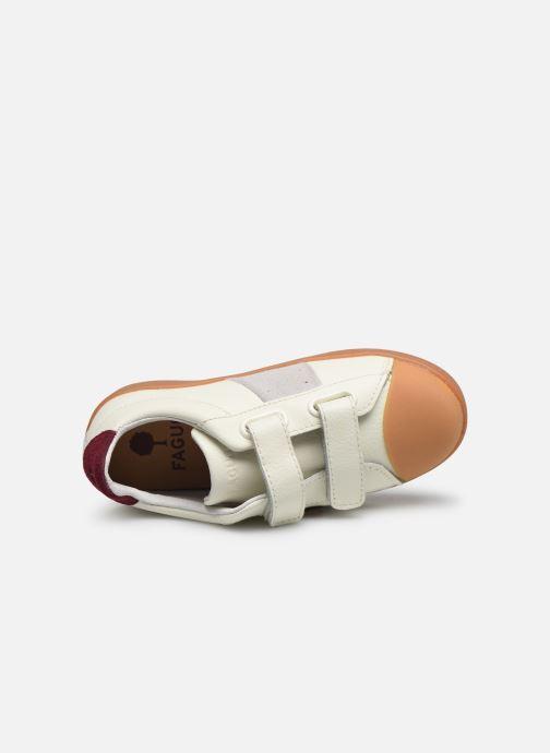 Sneakers Faguo Hostav L VP Wit links