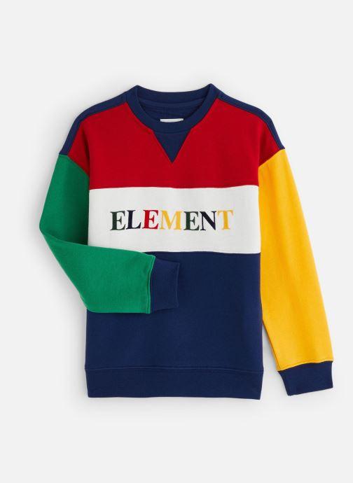 Vêtements Element Sweat S2FLA2ELP0 Bleu vue détail/paire