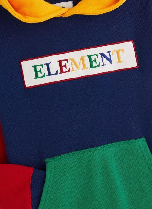Vêtements Element Sweat S2FLA3ELP0 Bleu vue portées chaussures
