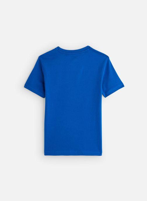 Vêtements Element T-shirt S2SSA3ELP0 Bleu vue bas / vue portée sac