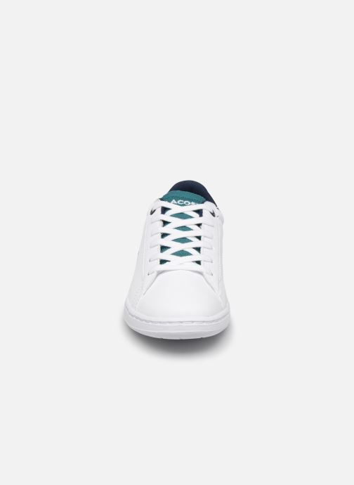 Baskets Lacoste Carnaby Evo 120 2 Blanc vue portées chaussures