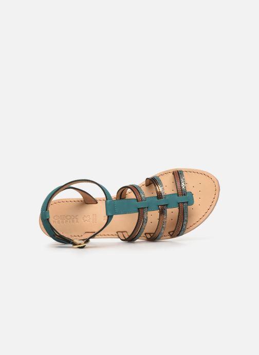 Sandales et nu-pieds Geox D SOZY D022CE Vert vue gauche