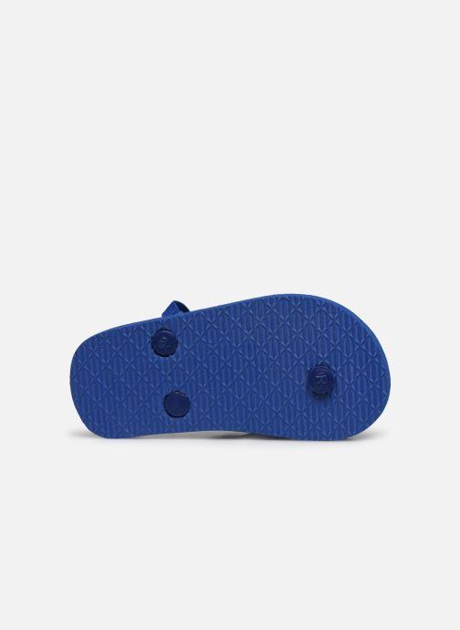 Chanclas Mickey Mouse Soho Azul vista de arriba