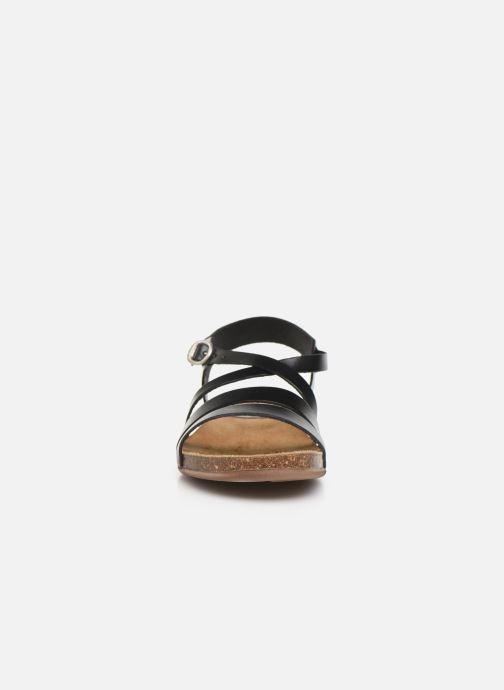 Sandales et nu-pieds Kickers ANATOMIUM Noir vue portées chaussures