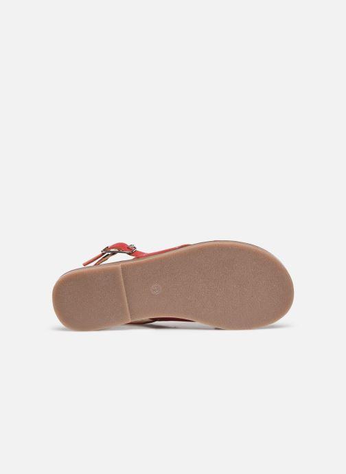Sandali e scarpe aperte Kickers KICLA Rosso immagine dall'alto