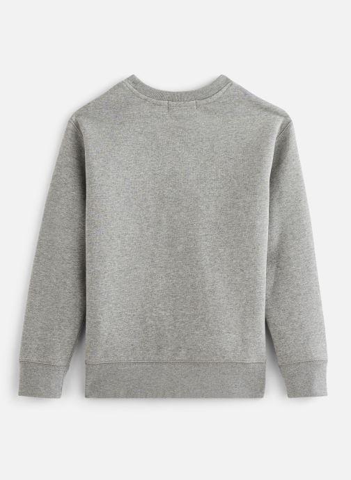 Vêtements Polo Ralph Lauren Ls Cn-Tops-Knit Gris vue bas / vue portée sac