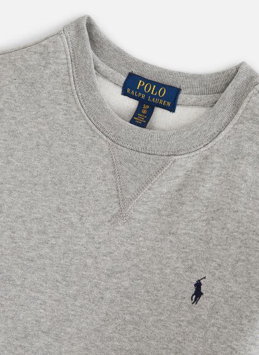 Vêtements Polo Ralph Lauren Ls Cn-Tops-Knit Gris vue portées chaussures
