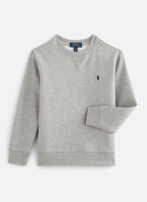 Vêtements Polo Ralph Lauren Ls Cn-Tops-Knit Gris vue détail/paire