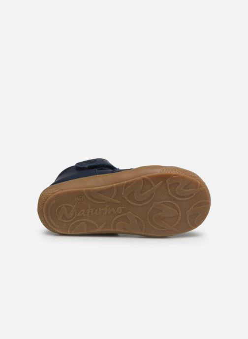 Ballet pumps Naturino Bede Blue view from above