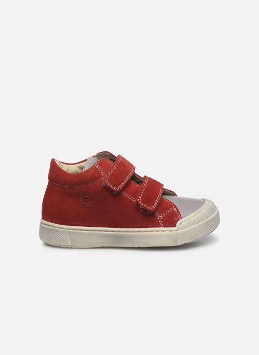 Bottines et boots Naturino Falcotto Snopes Rouge vue derrière