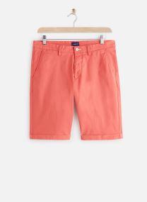 Regularular Sunfaded Shorts