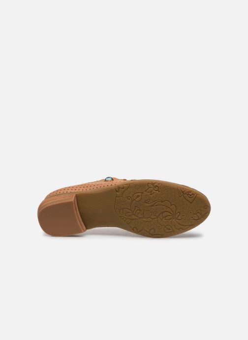 Zapatos con cordones Laura Vita CLCAUDIEO 019 Marrón vista de arriba