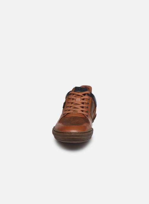 Baskets Kickers JUNGLE Marron vue portées chaussures