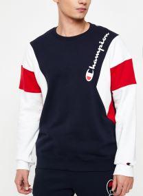 Crewneck sweatshirt Tricolore