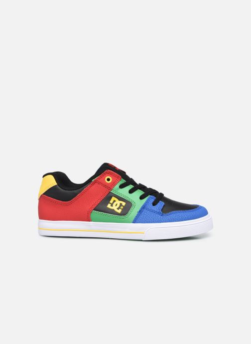 Sneaker DC Shoes Pure E mehrfarbig ansicht von hinten