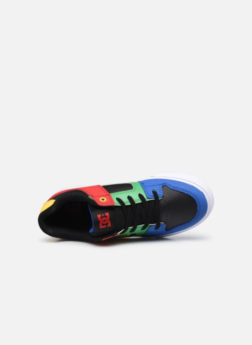 Sneaker DC Shoes Pure E mehrfarbig ansicht von links