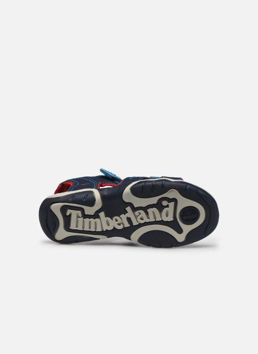 Sandales et nu-pieds Timberland Adventure Seeker Rebotl Bleu vue haut