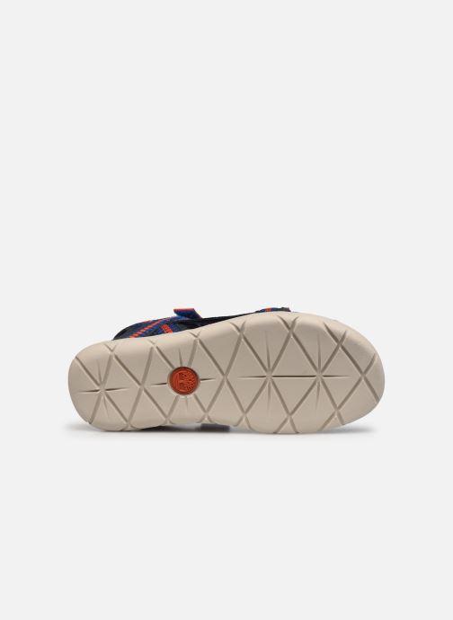 Sandales et nu-pieds Timberland Perkins Row Sandal Rebotl Bleu vue haut
