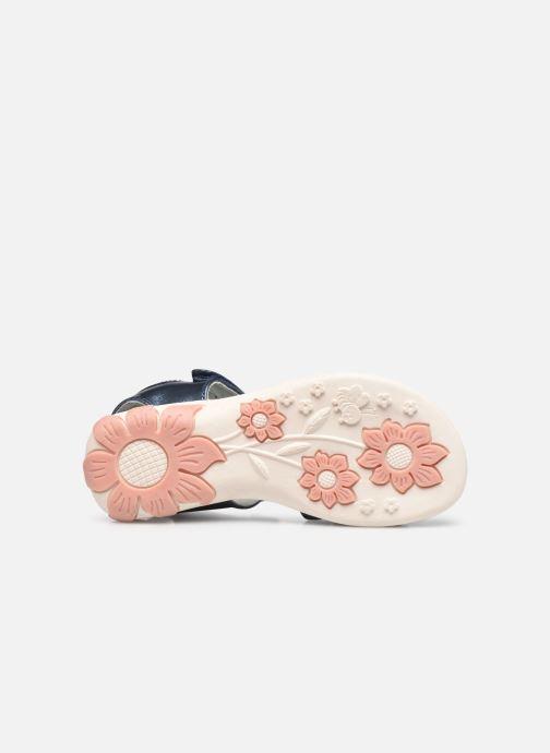 Sandales et nu-pieds Lico Lindsey V Bleu vue haut