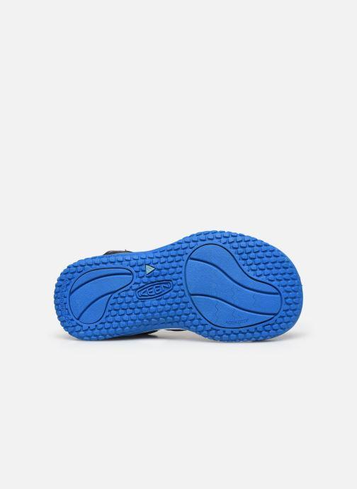 Sandali e scarpe aperte Keen Stingray Grigio immagine dall'alto