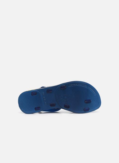 Infradito Ipanema Ipanema Fashion SD VII Kids Azzurro immagine dall'alto