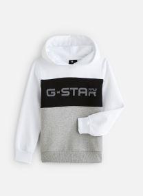 Sweatshirt HOODY/SQ15096/20