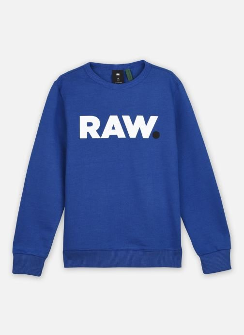 Tøj Accessories Sweat imprimé à col rond- Worked blue