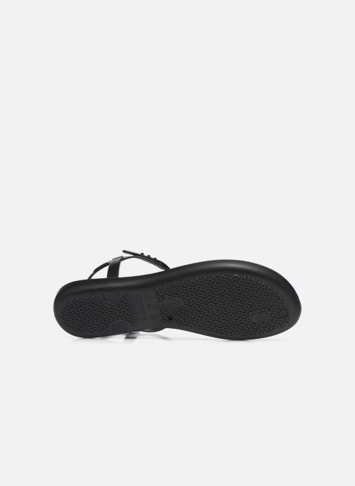 Sandali e scarpe aperte Ipanema Ipanema Class Glam II Fem Nero immagine dall'alto