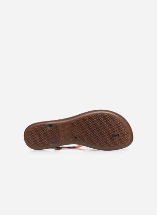 Sandales et nu-pieds Ipanema Ipanema Leaf Sandal Fem Marron vue haut
