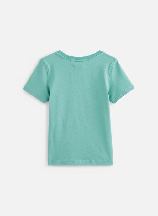 Vêtements Jean Bourget T-Shirt JQ10063 Vert vue bas / vue portée sac