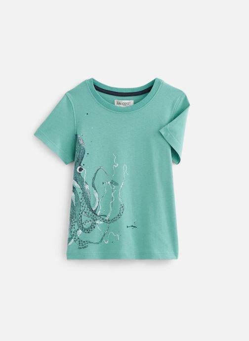 Vêtements Jean Bourget T-Shirt JQ10063 Vert vue détail/paire