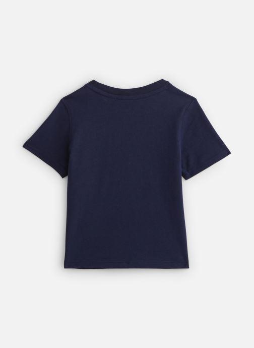 Vêtements Timberland T05J17 Bleu vue bas / vue portée sac