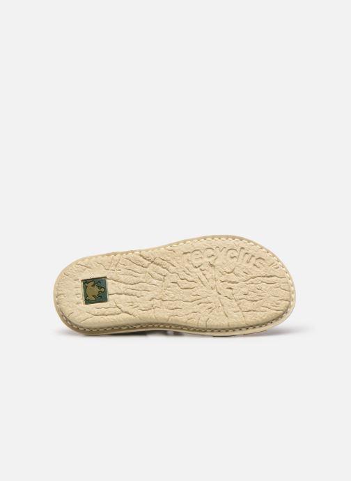 Sandali e scarpe aperte El Naturalista Terra E226 Verde immagine dall'alto